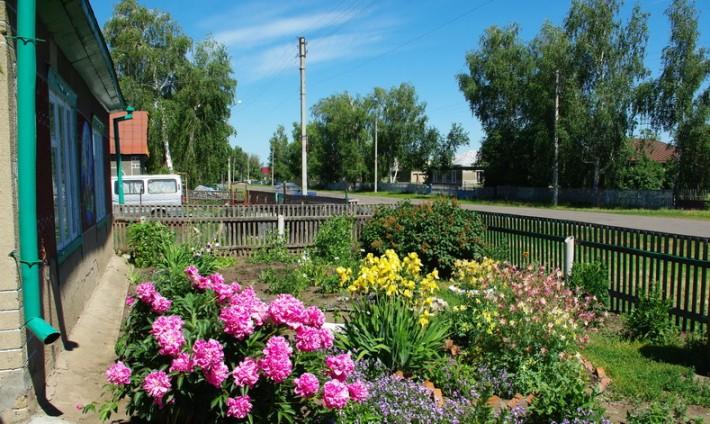 Цветники и улица в селе