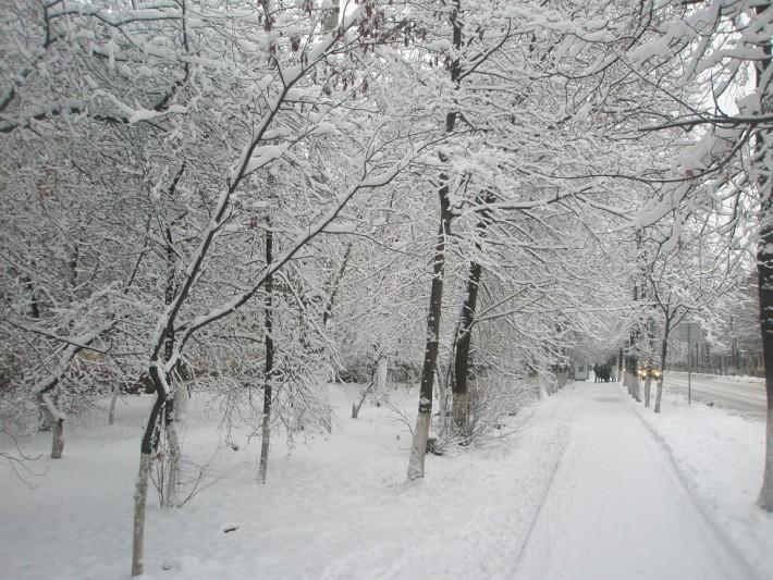 Зимние красоты в Железнодорожном