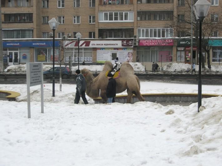 Зимние прогулки по Железнодорожному