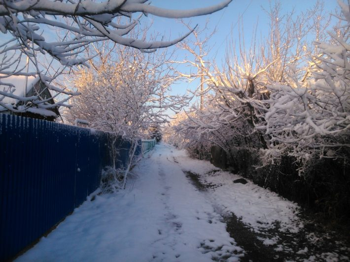 Максимальный снег в Краснодаре