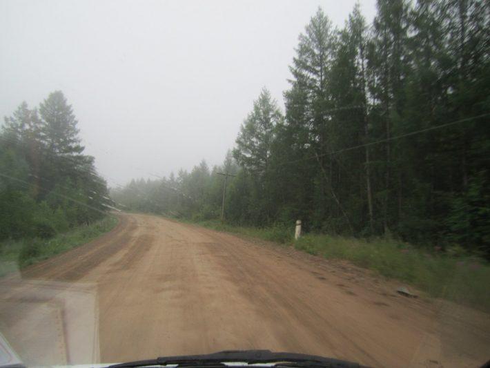 Туман в тайге