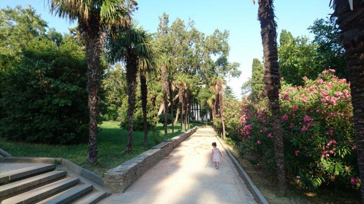 Пальмовая аллея в Воронцовском парке