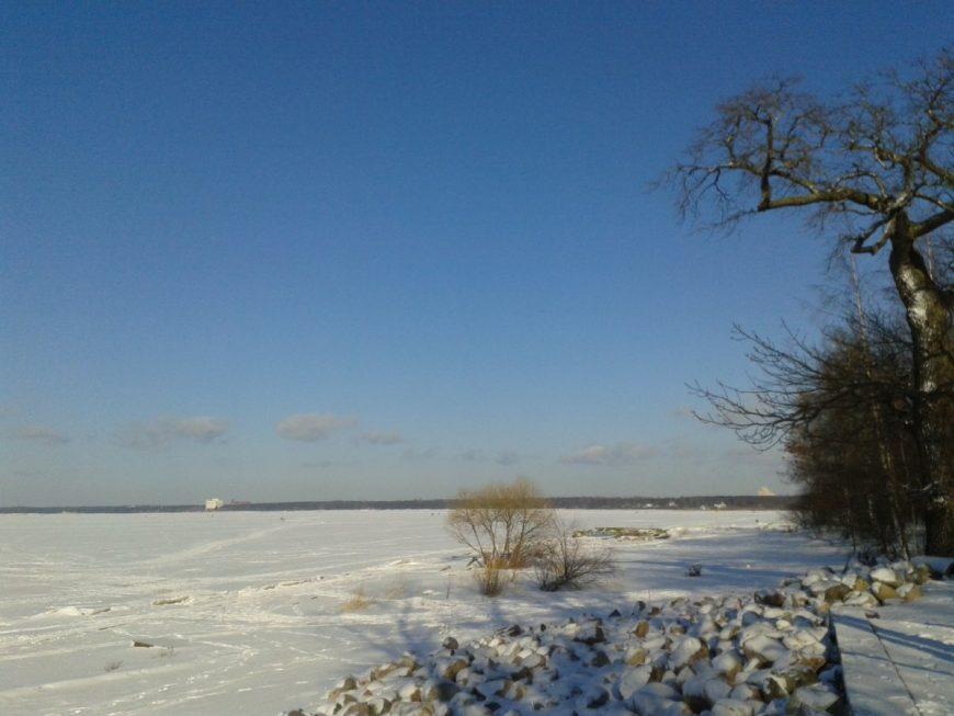 Финский залив у парка Дубки в Сестрорецке зимой